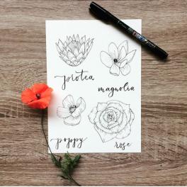11.10.Květinový lettering
